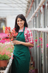 Garden center employee standing and holding flower pot