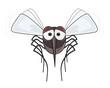 mosquito - illustration