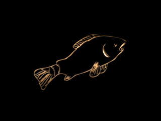 Constellation Fish