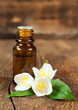 essential oil and blooming jasmine