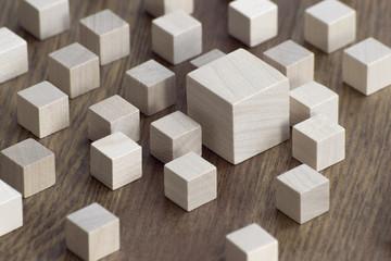 Holz / Vergleich