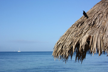 Holiday in Caribbean sea