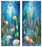 Underwater banners with cockleshells, vector