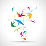 Fototapety Abstract swallows background # Vector