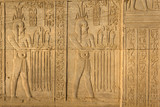 Hieroglyphic carvings in Kom Ombo temple, Egypt