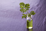 wormwood herb essence natural medicine