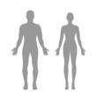 Male and female silhouettes - 52522211