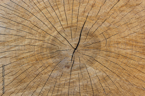 Wooden dark background