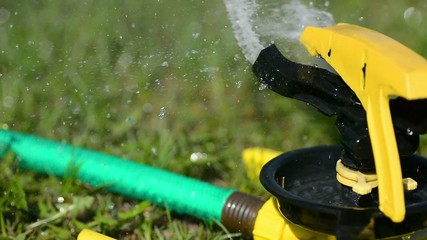 Water Sprinkler watering a Lawn with Green Grass