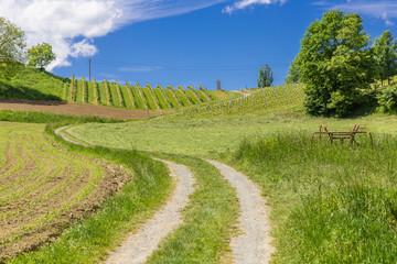 Feldweg Südsteiermark, Österreich