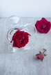 scarlet roses and glass beaker on the light table top