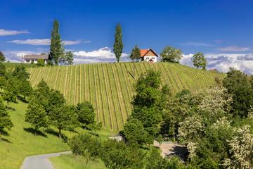 Südsteirische Landschaftsidylle, Österreich