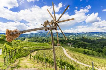 Weinland Südsteiermark, Österreich