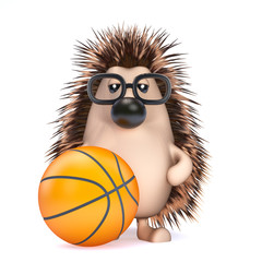 Cute hedgehog playing basketball