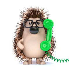 Cute hedgehog is on the phone