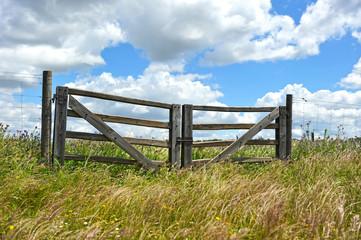 Las puertas del campo