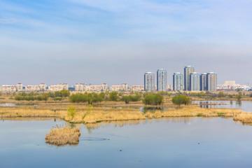Large ecosystem near Bucharest residential suburbs.