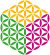 Flower of Life Cube ( Blume des Lebens Würfel )