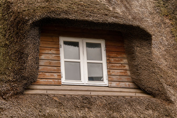 Dachgaube im Reetdach