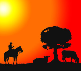 Vaquero y vacas