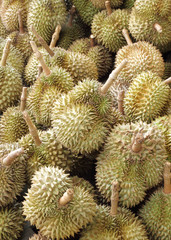 durian, king of fruit