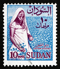 Postage stamp Sudan 1962 Cotton Picker
