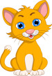 cute cat cartoon expression