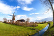 charming Dutch windmill on grassland