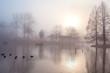 misty morning in autumn park