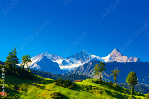 canvas print picture Alps mountains