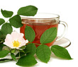 Tea made from dog-rose