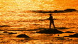 fisherman with spinning silhouette at sea sunset