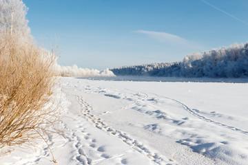 Dvina rver under ice. Landscape near House of painter Repin.