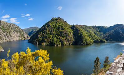 Canyon Sil River