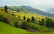 Spring landscape in the Carpathian mountains