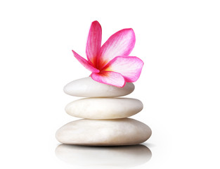 frangipani flowers stones