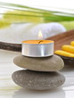 Wellness Grün Kerze Wollgras Handtücher