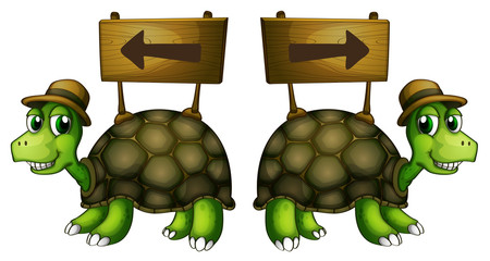 Turtles carrying wooden signboards