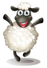 A happy sheep
