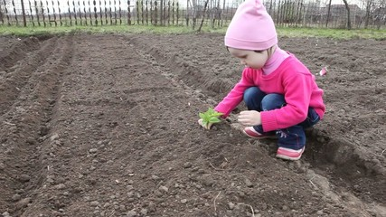 The little girl put the plant into the ground.
