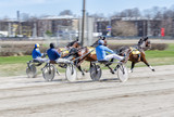 Harness racing.