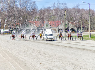 Harness racing. At start position.