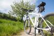 Leinwandbild Motiv e-bike, pedelec, akku, fahrrad, mountainbike