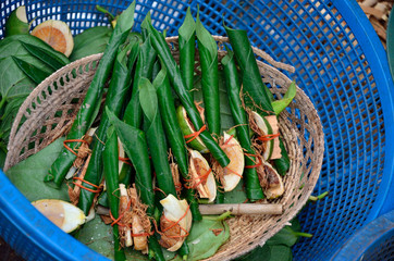 Areca nut, betel nut chewed with the leaf is mild stimulant