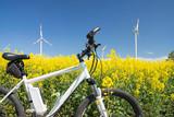 e-bike, pedelec, windrad, raps, öko