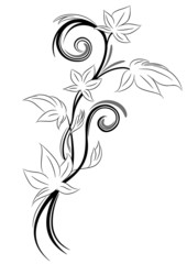 tatuaggio edera