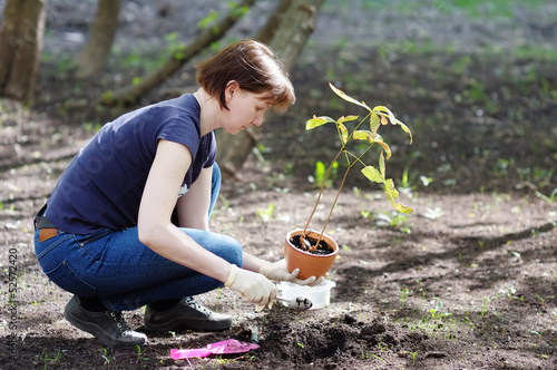 Woman planting young seedling