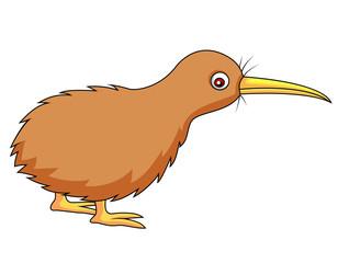 Kiwi bird cartoon
