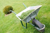 Gardening season - green lawn with wheelbarrow