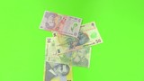 Romanian lei banknotes falling on green background